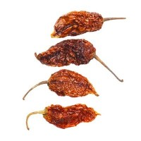 Naga jolokia_chiles_blackpepperco