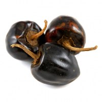 chiles-chile-cascabel-blackpepperco